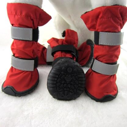 Schneeschuhe am Hund bei Tierschuh.at