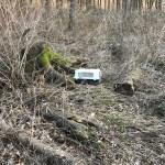 Jack Russel Mix ausgesetzt am Kiliansberg/Kalbach