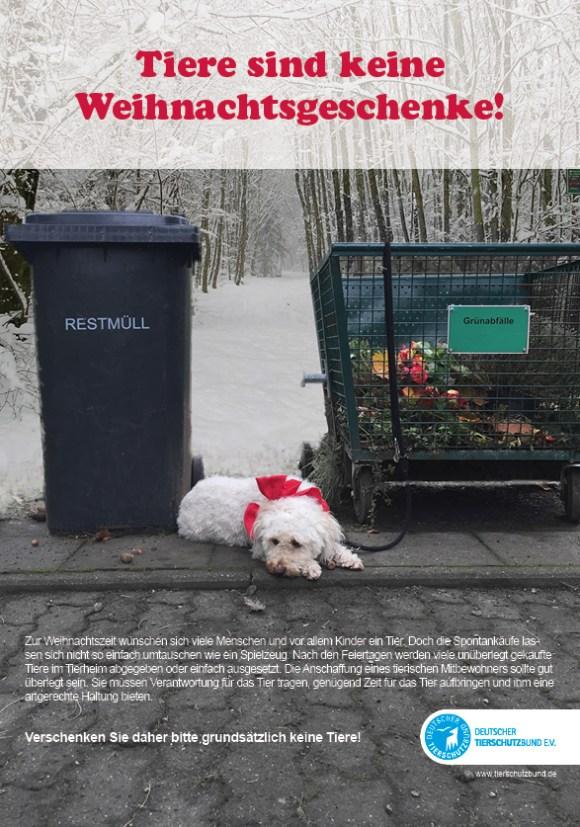 Tiere als Weihnachtsgeschenke