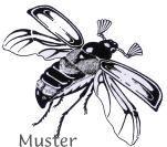 Tierstempel heimische Tiere Insekten Raupen