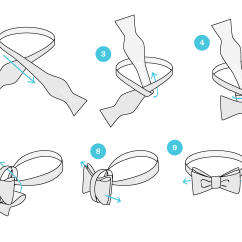 How To Tie A Bow Step By Diagram Synapse Unlabeled | Ties.com