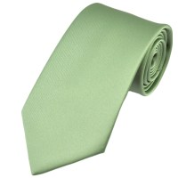 Plain Sage Green Boys Tie from Ties Planet UK