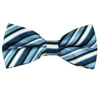 Shades of Blue & White Striped Men's Silk Bow Tie from ...