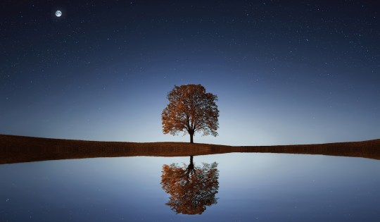Toipumisen askeleet – Tyyneysrukous muutoksen apuna
