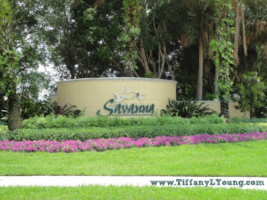 Savanna Homes for Sale in Weston