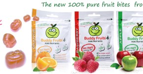 [Review] Buddy Fruits