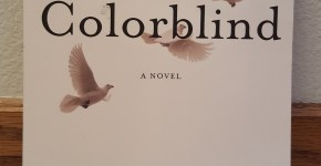 Colorblind: A Novel