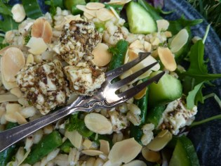 Yotam's Pearl Barley Salad with parsley and cucumber
