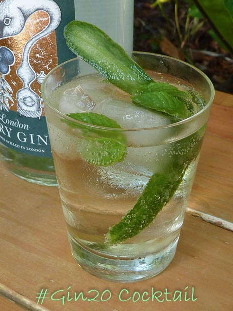 gin cocktail with mint, cucumber and elderflower