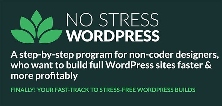 No Stress WordPress: Dave Foy's Course For Non-Coders