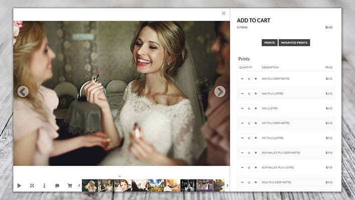 NextGen Pro, WordPress Plugin For Photographers