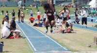 Terralyn Johnson led the Texas Southern Lady Tigers in the 2014 Texas State Invitational track and field meet in San Marcos, Texas. …read more Read more here: TSUBall.com Related posts: […]