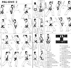 Tang Soo Do Forms Diagrams 2000 Honda Civic Dx Radio Wiring Diagram White Tiger Family Martial Arts Curriculum Karate Kobudo Aikido Kenjutsu Jojutsu Tae Kwon