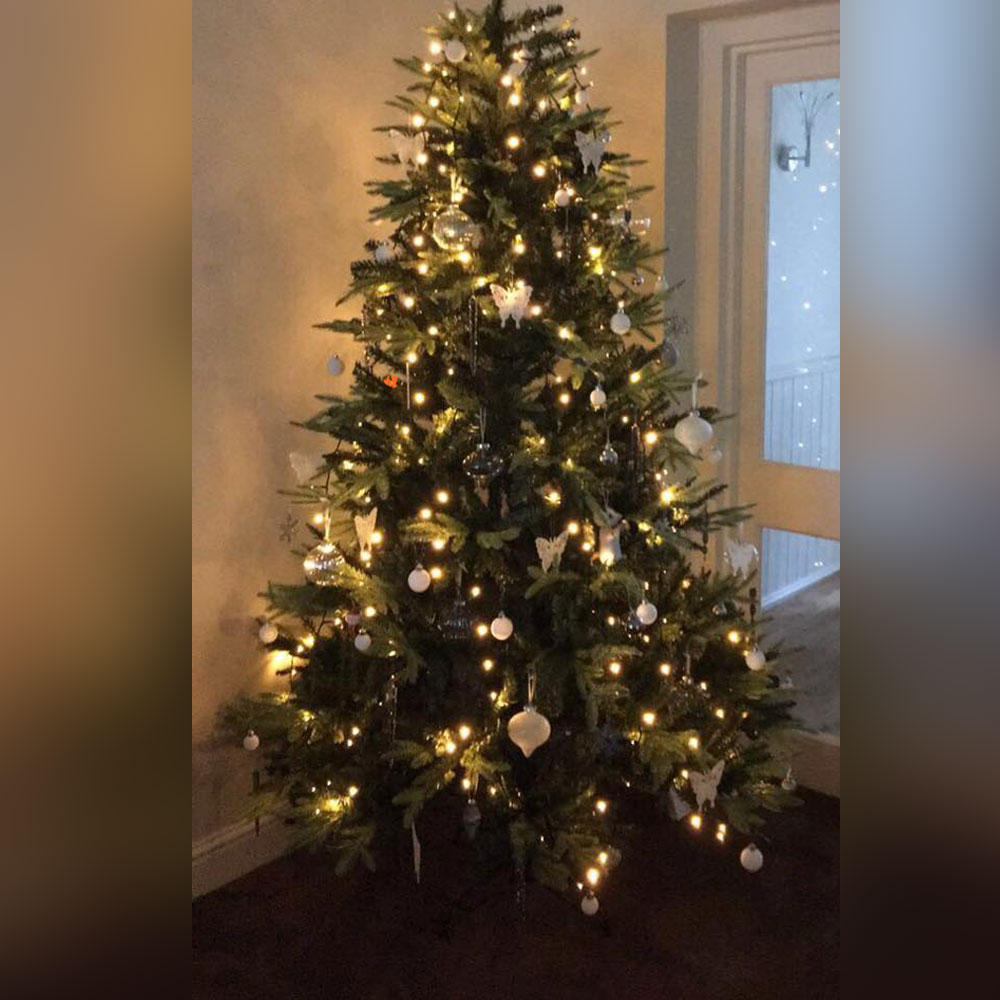 Christmas Tree Inspiration 2017  The Hip Horticulturist