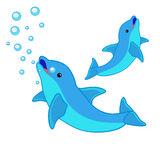 p2_doi_delfini