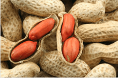 Alergiile alimentare la copii
