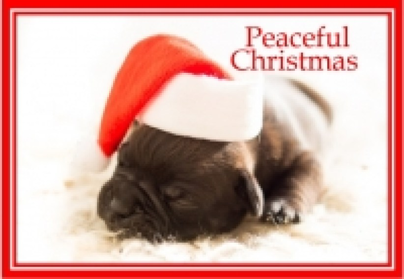 peacefulchristmas