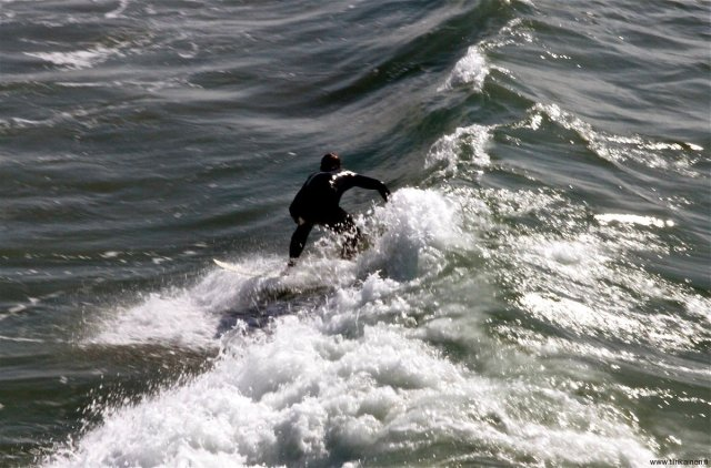 Sitll surfing in late November in Los Angeles