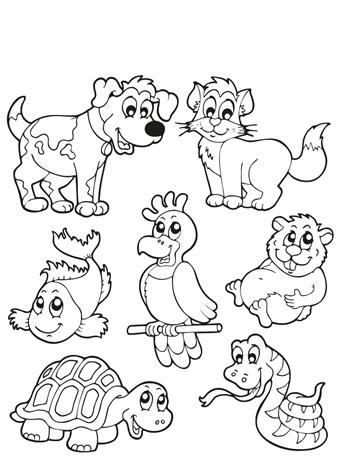 Kleurplaten dieren: 49 leukste dieren kleurplaten voor kids!