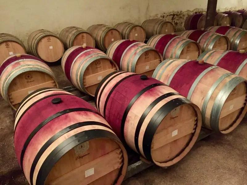 My Introduction To Georgian Wine