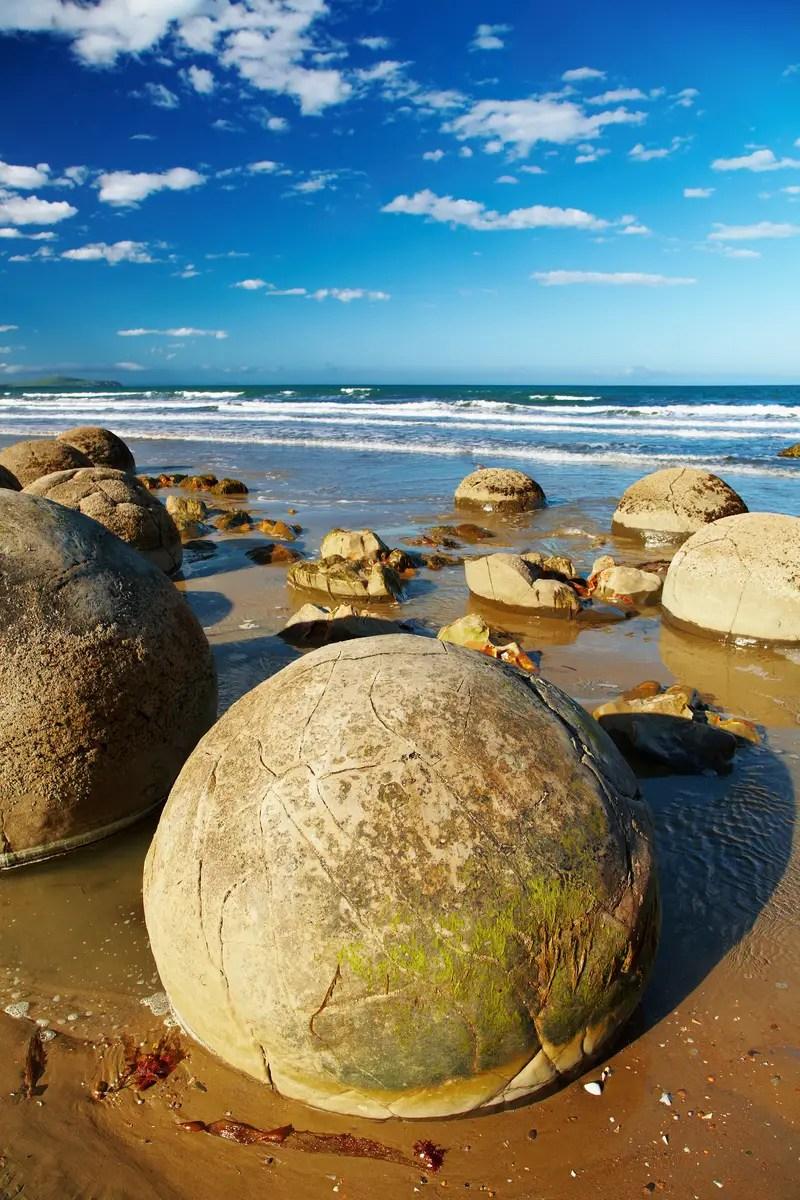 moeraki boulders are free