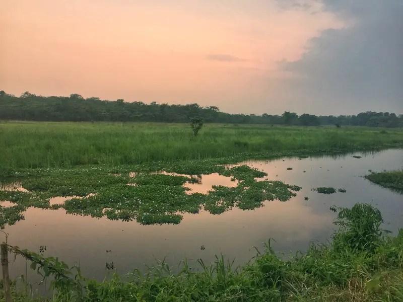 chitwan national park sunset