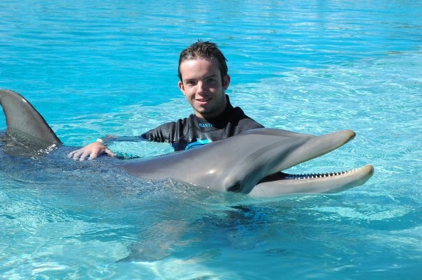 do not swim with dolphins
