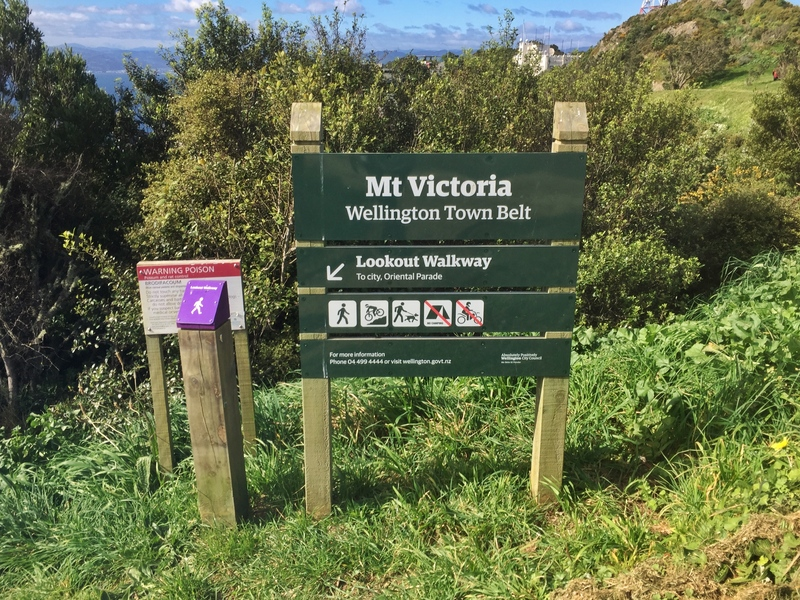 mt victoria walk lookout