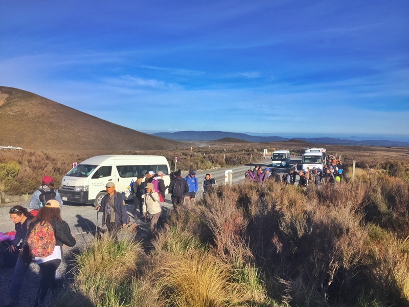 cars at the tongariro crossing