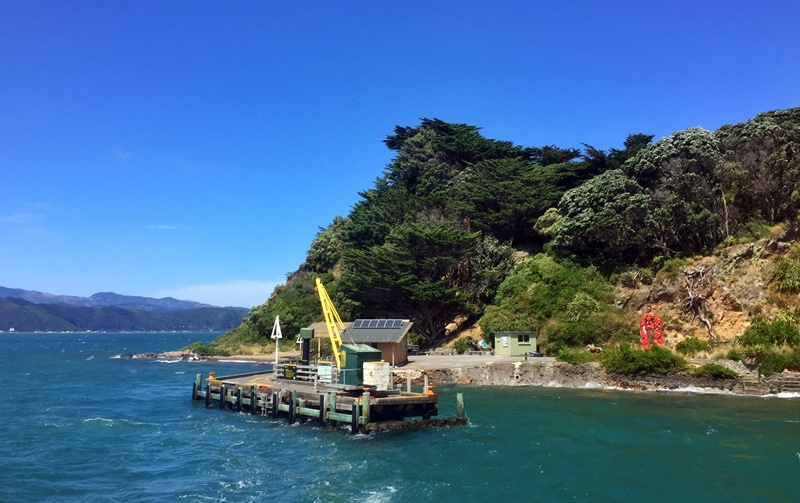 arriving at somes island