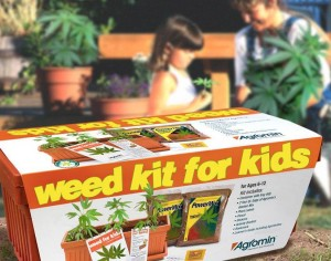 weed kit for kids 300x236 weed kit for kids