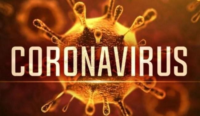 Hikmah Virus Corona
