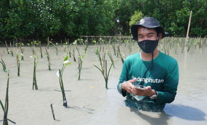 Gojek Gandeng Jejak.in, Luncurkan GoGreener Carbon Offset