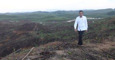 'Penguasa' Ibu Kota Negara Baru Ditunjuk Langsung Presiden, Tak Ada Gubernur dan DPRD