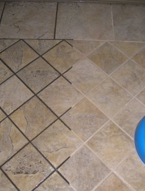 www tile cleaning pros com