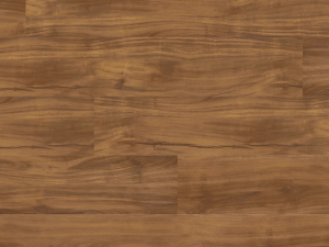 Luxwood Acacia