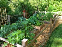 23 Organic Products for Every Yard and Garden Issue ...