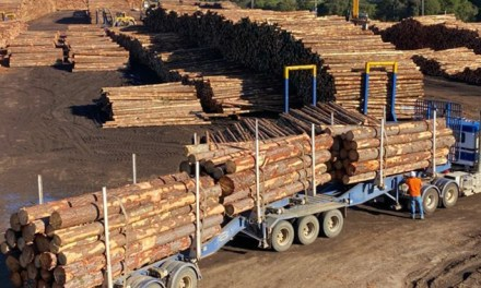 LOG JAMS HIT VICTORIA'S PORTLAND PORT