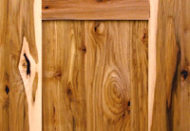 Kitchen Cabinets Plain Doors