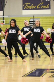 Photos from the Feb. 12, 2016 TCHS Dance Recital. (Photos taken by Yearbook photographer Kelsey Crawford.)
