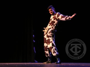 Photos from the Mr. Falcon pageant on April 27, 2017. (Photos by The Creek Yearbook staff Amanda Barber.)