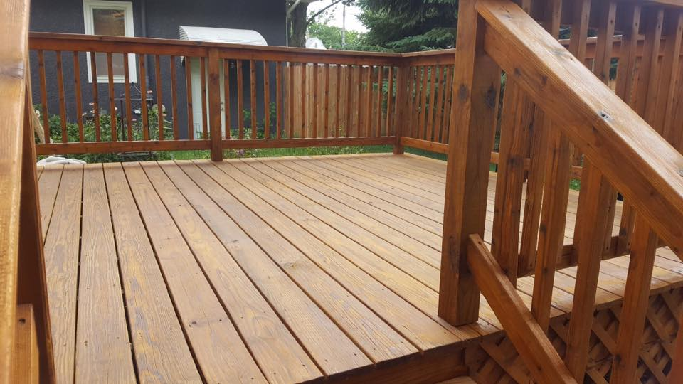 timber guard finishing colors