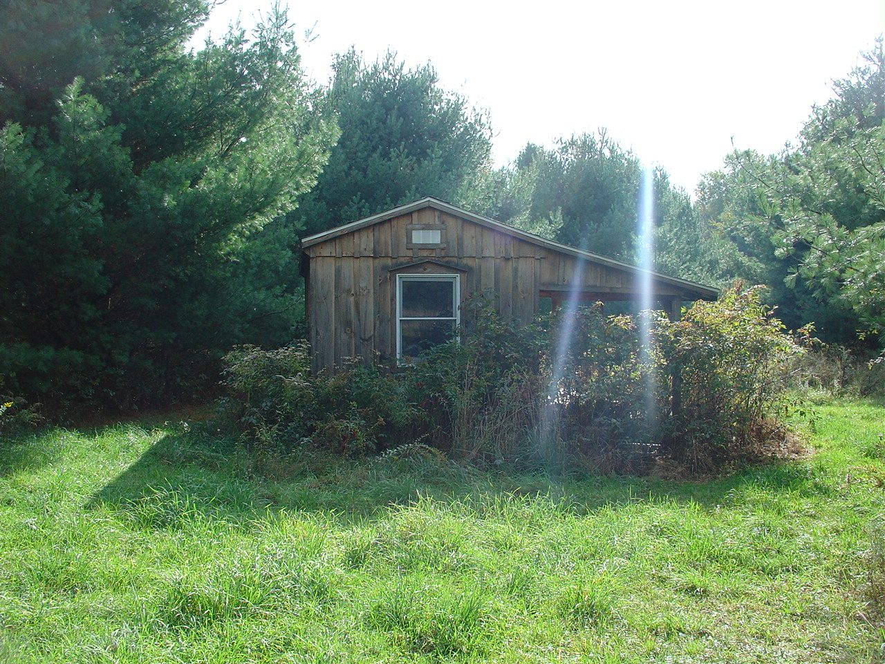 1908 Acres With Timber Pole Barn Cabin And Beaver Pond In The Town Of Harmony