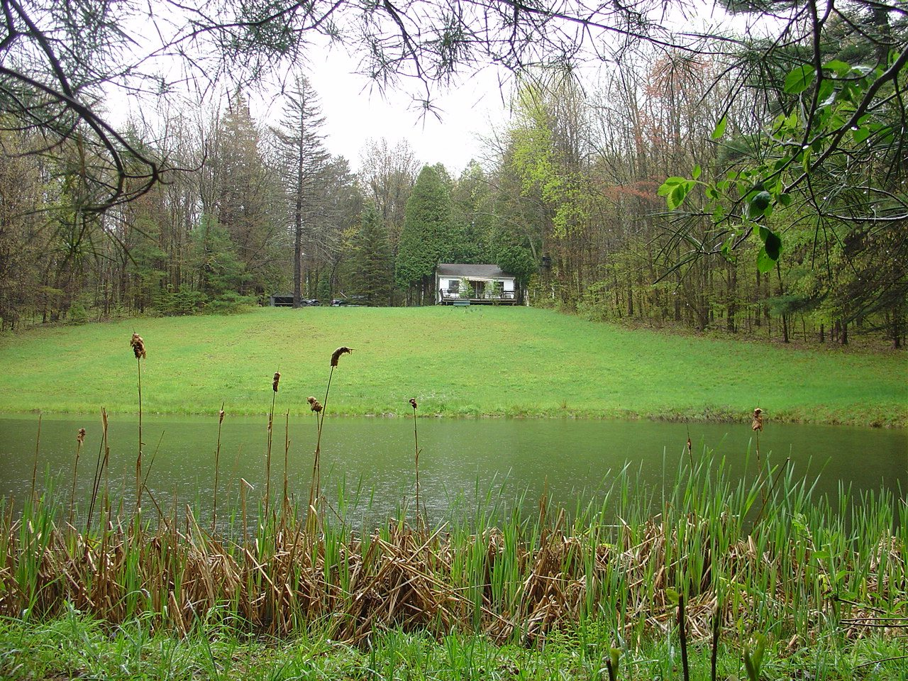 pond and camp