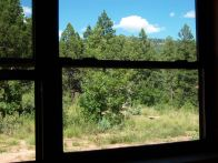 View out the side dining area windows.