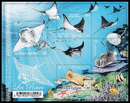 """Résultat de recherche d'images pour """"poissons de wallis et futuna"""""""
