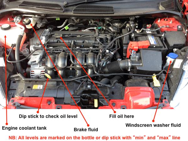 1999 mercury cougar radio wiring diagram 4 way switches search results ford focus engine parts diagram.html - autos weblog