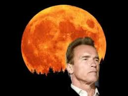 Arnie and the moon.