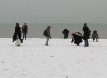 snowballfight