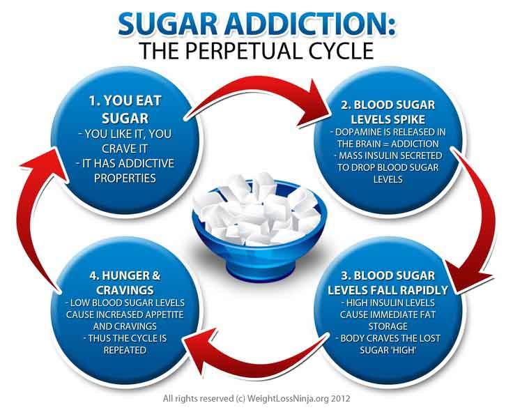 Le Sucre et ses effets  - Page 2 Sugar-cycle
